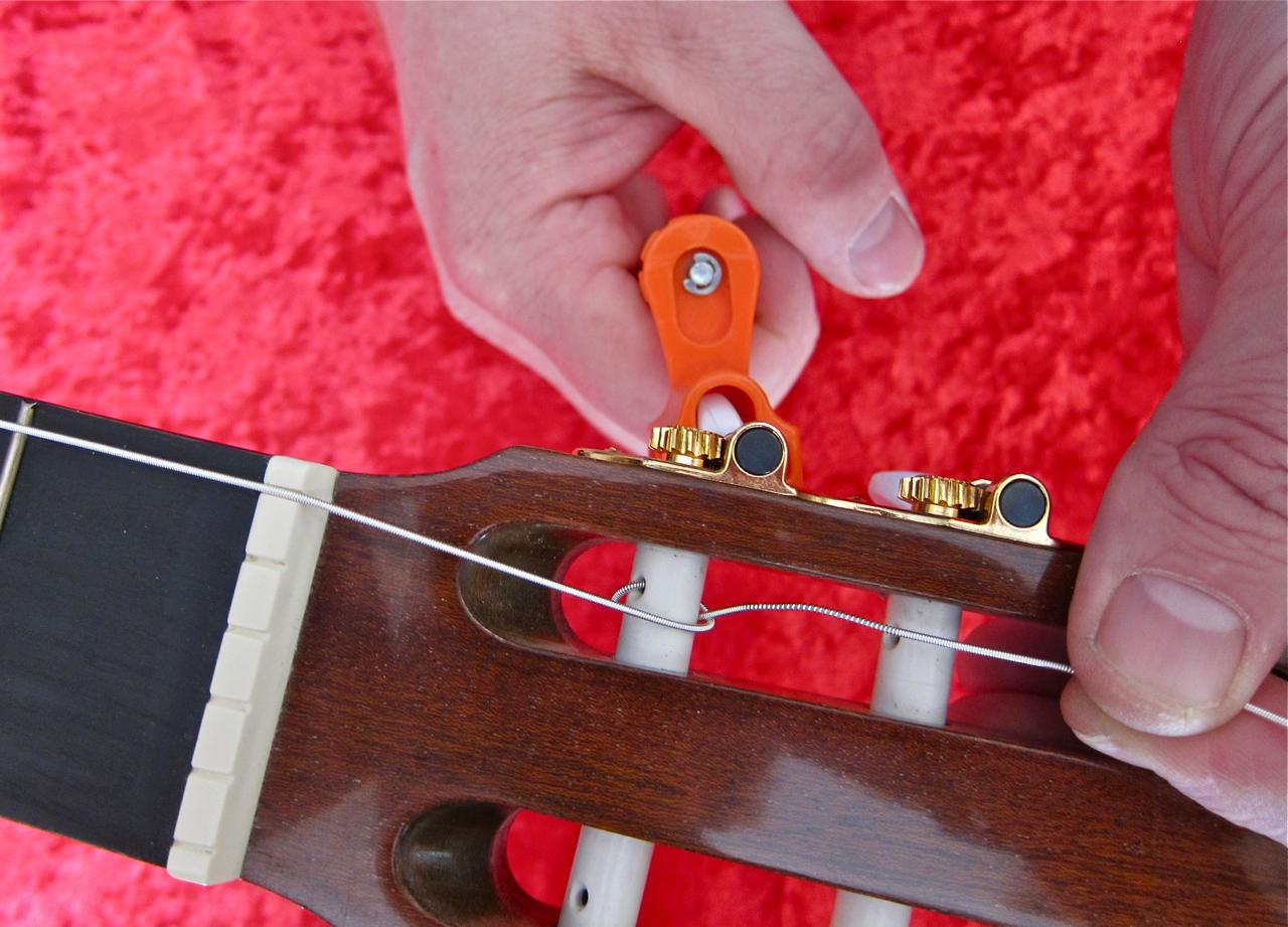 The Nylon Strings Onto 50
