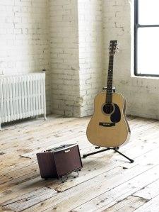 ac-33-rw_room_guitar_gal