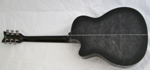 Schecter Hellraiser Studio Acoustic – full back