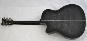 Schecter Hellraiser Studio Acoustic – full back