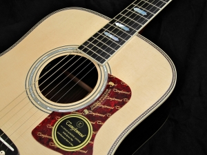 Tanglewood TW1000HSRE – binding + rosette