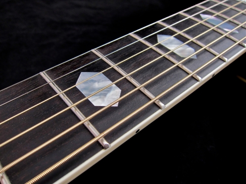Tanglewood TW1000HSRE – fretboard