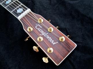 Tanglewood TW1000HSRE – headstock