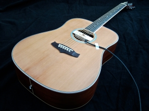 Tanglewood TW28-CLN + Woody – beauty shot