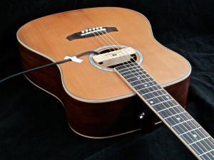 Tanglewood TW28-CLN + Woody – body angle