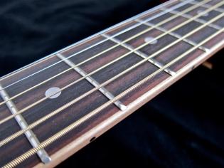 Tanglewood TW28-CLN + Woody – fretboard