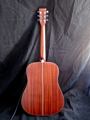 Tanglewood TW28-CLN + Woody – full back 2