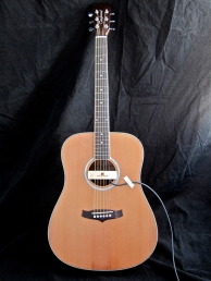 Tanglewood TW28-CLN + Woody – full front 2