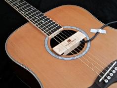 Tanglewood TW28-CLN + Woody – soundhole
