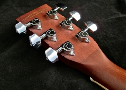 Tanglewood TW28-CLN + Woody – tuners