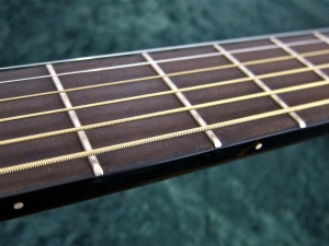 Walden CD4040-CERT – fretboard