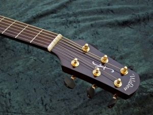Walden CD4040-CERT – headstock + nut + frets