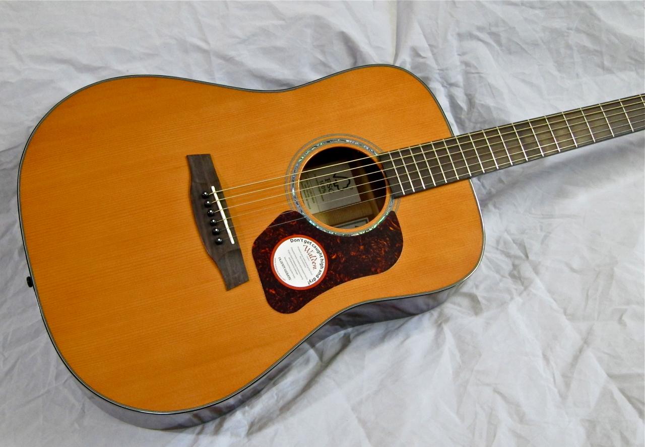 ilmainen porn walden kitarat