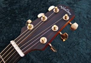 Walden G630CE – headstock