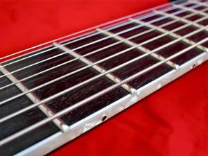 ESP LTD SCT-607B – fretboard