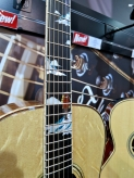 Takamine Bear Claw top + fb inlays
