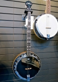 Tanglewood Cove Creek banjo