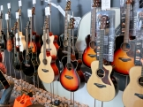 Yamaha – wall of guitars