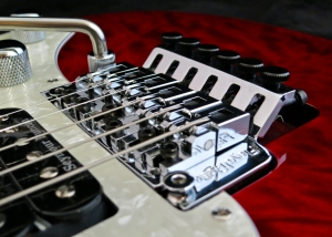 LTD Elite ST-1 – Floyd Rose