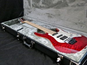 LTD Elite ST-1 – hard case