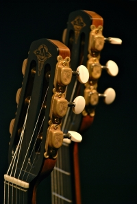 AJL-Guitars – headstocks