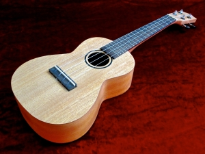 Tanglewood TU-3 – beauty shot