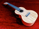 Tanglewood TU-3E – beauty shot VID