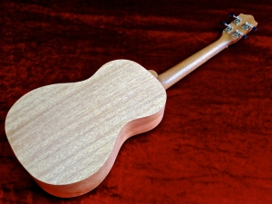 Tanglewood TU-5 – back beauty 2 VID