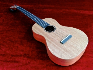 Tanglewood TU-5 – beauty shot VID