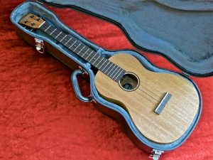 Tanglewood TU-5 – case vs2