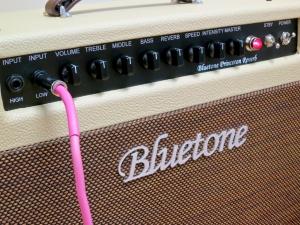 Bluetone Princeton Reverb – front panel angle