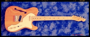 Tokai ATE-33N Thinline – groovy natural 1