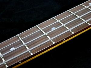 Duesenberg D-Bass – fretboard