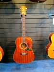Tanglewood acoustic