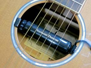 Seymour Duncan SA-1 + Tanglewood TW28-CSN
