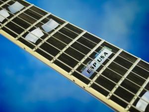 ESP USA Eclipse – fretboard
