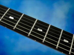 Music Man Majesty – fretboard