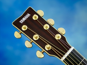 Yamaha LL66 ARE – headstock
