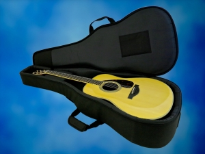 Yamaha LL66 ARE – soft case