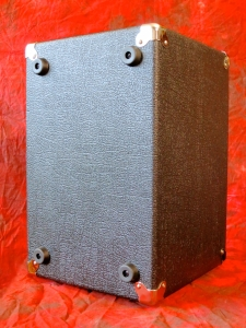 Carvin MB10 Micro Bass – back view