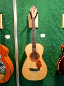 MM 2015 – RoZaWood Guitar Bouzouki