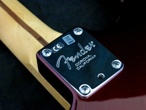 Fender Am Std Stratocaster HSS Shawbucker – neck plate