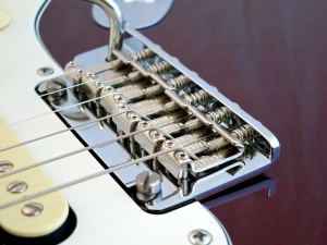 Fender Am Std Stratocaster HSS Shawbucker – vibrato