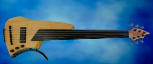 Juha Savisalo 6-String double bass – full front LRG