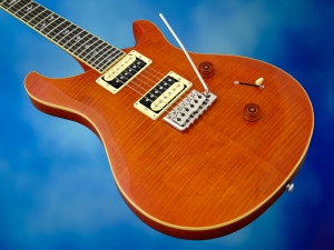 PRS SE Custom 24 30th Ann – body beauty 2