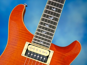 PRS SE Custom 24 30th Ann – cutaways