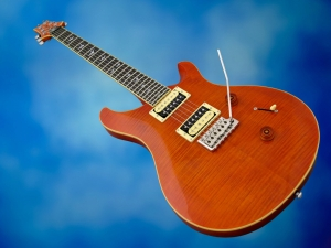 PRS SE Custom 24 30th Ann – beauty shot 2