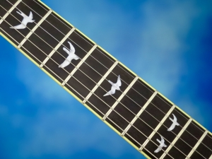 PRS SE Custom 24 30th Ann – bird inlays
