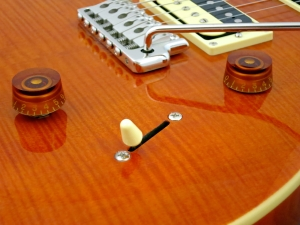PRS SE Custom 24 30th Ann – controls