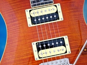 PRS SE Custom 24 30th Ann – pickups
